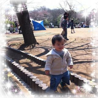 image-20120405131702.png